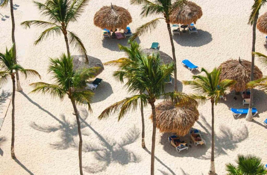 Pescana plaza sa palminim drvecem i lezaljkama na Arubi